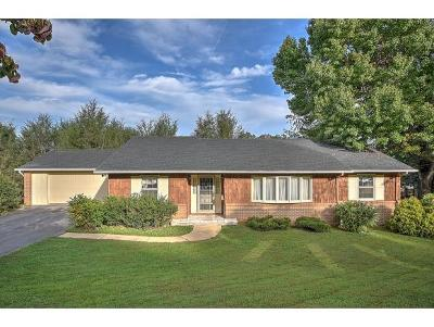 Johnson City Single Family Home For Sale: 613 Willowood Drive