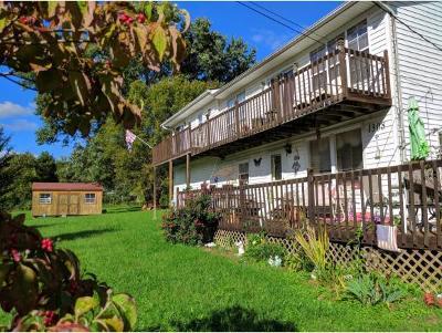 Elizabethton Single Family Home For Sale: 1308 Old Bristol Highway