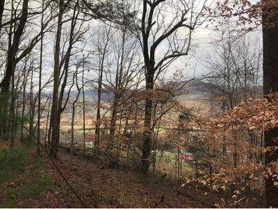 Residential Lots & Land For Sale: TBD Bailey Hollow Rd.