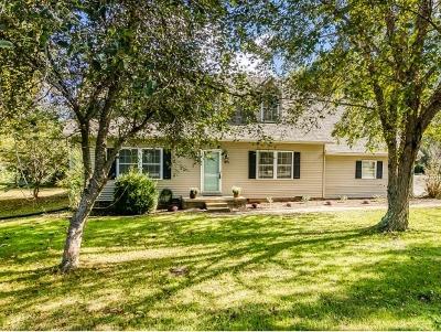 Johnson City Single Family Home For Sale: 1914 Fairway Drive
