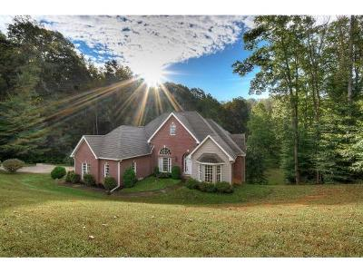 Unicoi Single Family Home For Sale: 119 Fairway Point