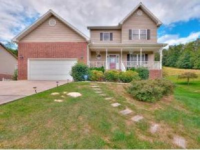 Jonesborough Single Family Home For Sale: 201 Olde Farm Dr