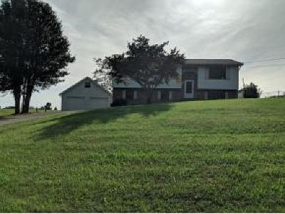 Afton TN Single Family Home For Sale: $148,000
