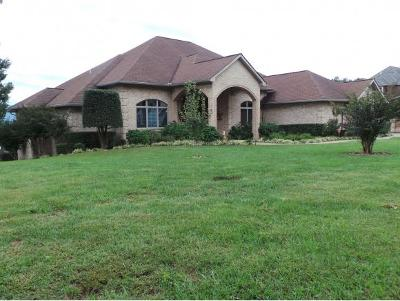 Greeneville Single Family Home For Sale: 300 Golf Trace