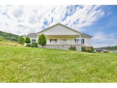Gray Single Family Home For Sale: 152 Burhl Chase Road