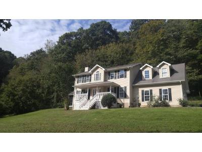 Damascus, Bristol, Bristol Va City Single Family Home For Sale: 22272 Flame Leaf Drive