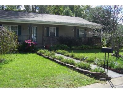 Johnson City Single Family Home For Sale: 1069 Snowden Terrace