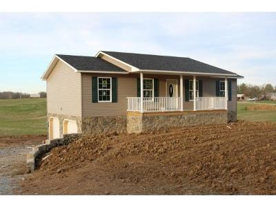 Greeneville Single Family Home For Sale: 260 Raders Sidetrack Road