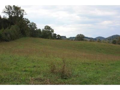Greene County Residential Lots & Land For Sale: 15650 Kingsport Hwy