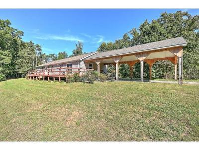 Greeneville Single Family Home For Sale: 10343 Asheville Hwy