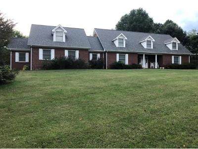 Johnson City Single Family Home For Sale: 3320 Martindale Drive
