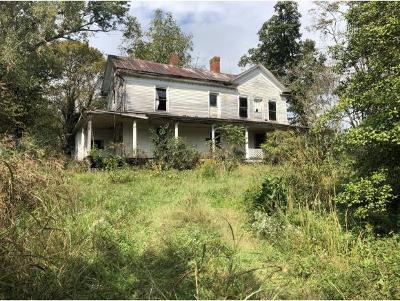 Greeneville Single Family Home For Sale: 6955 Horton Hwy