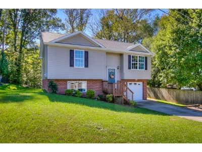 Kingsport TN Single Family Home For Sale: $156,450