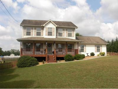Piney Flats Single Family Home For Sale: 250 Taylor Drive
