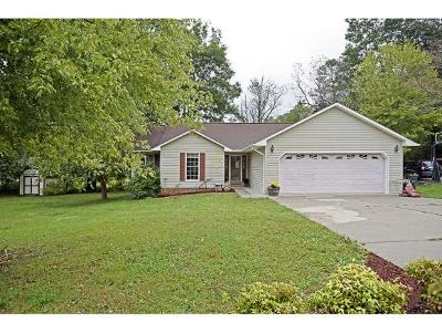 Single Family Home For Sale: 147 Valley Crest Drive