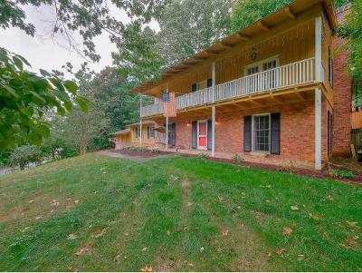 Johnson City Single Family Home For Sale: 1414 Rotherwood Drive