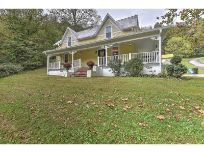 Johnson City Single Family Home For Sale: 2904 Cherokee Rd