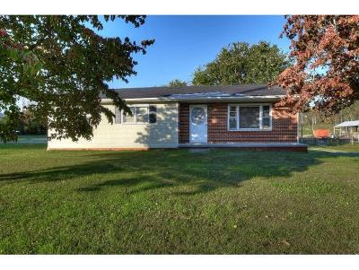 Bristol Single Family Home For Sale: 303 Bethel Drive