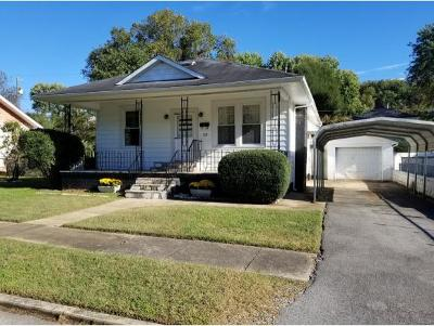 Erwin Single Family Home For Sale: 528 S Main Ave