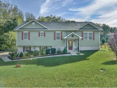 Jonesborough Single Family Home For Sale: 155 Dean Archer Road