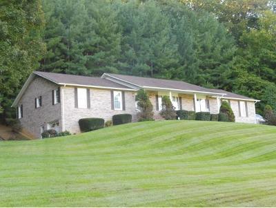 Kingsport Single Family Home For Sale: 1025 Lebanon Road
