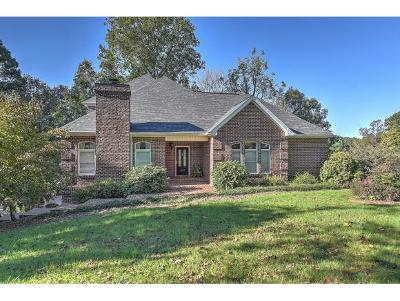 Kingsport Single Family Home For Sale: 1009 Wellington Blvd