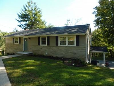 Kingsport TN Single Family Home For Sale: $189,900