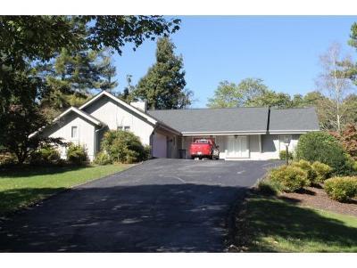 Bristol TN Single Family Home For Sale: $315,000