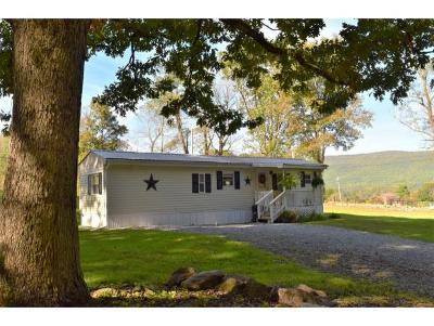 Elizabethton Single Family Home For Sale: 212 Dry Branch Road
