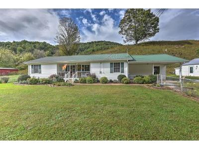 Elizabethton Single Family Home For Sale: 763 Blue Springs Rd