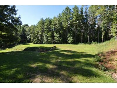 Butler Residential Lots & Land For Sale: 19A Racoon Circle