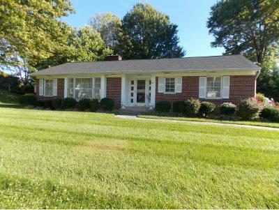 Bristol VA Single Family Home For Sale: $204,500
