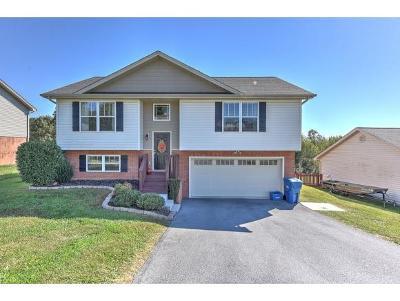 Jonesborough Single Family Home For Sale: 2128 Ida Sue Drive