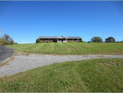 Blountville Single Family Home For Sale: 241 Buncombe