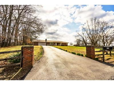 Blountville Single Family Home For Sale: 115 Ramsey Pvt Drive