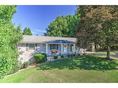 Kingsport TN Single Family Home For Sale: $165,000