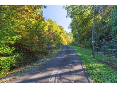 Rogersville Single Family Home For Sale: 200 Early Branch Road