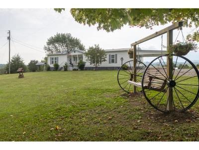 Abingdon Single Family Home For Sale: 27220 Denton Valley Rd