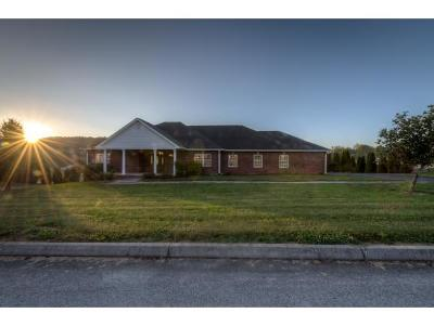 Blountville Single Family Home For Sale: 161 Sunnyfield Dr