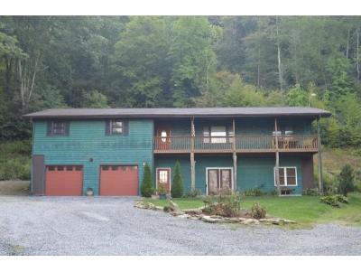 Roan Mountain Multi Family Home For Sale: 9369 & 3 Hwy 19e & 342 Beaver Creek