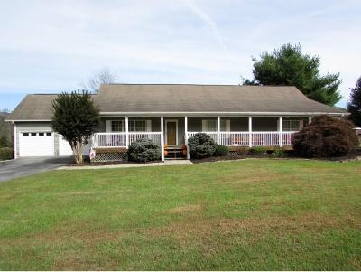 Elizabethton Single Family Home For Sale: 130 Deer Glen Drive
