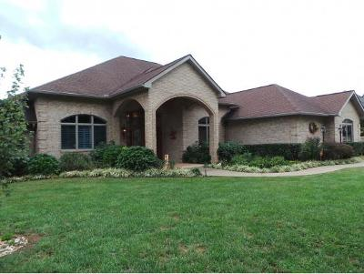 Greeneville Single Family Home For Sale: 300 Golf Trace Drive