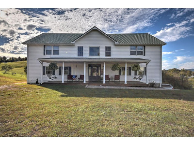 Greene County, Washington-Tn County Single Family Home For Sale: 8245 Baileyton Road
