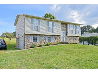 Single Family Home For Sale: 6400 Snapps Ferry Rd