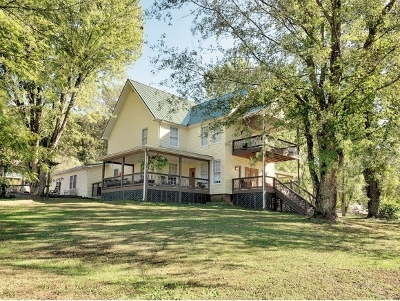 Greene County Single Family Home For Sale: 225 Mary Lamons
