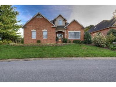 Johnson City Single Family Home For Sale: 1820 Waters Edge Dr