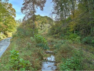 Greene County Residential Lots & Land For Sale: TBD Pyburn Ln