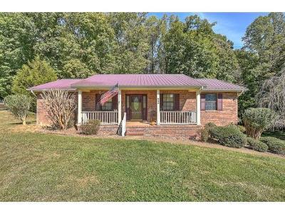 Single Family Home For Sale: 545 Brian Cir