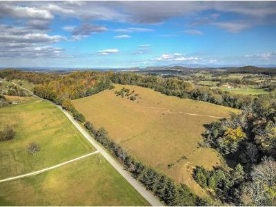 Washington-Tn County Residential Lots & Land For Sale: TBD Woodmont Road