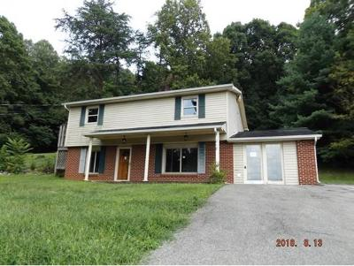 Blountville Single Family Home For Sale: 218 Talon Private Drive